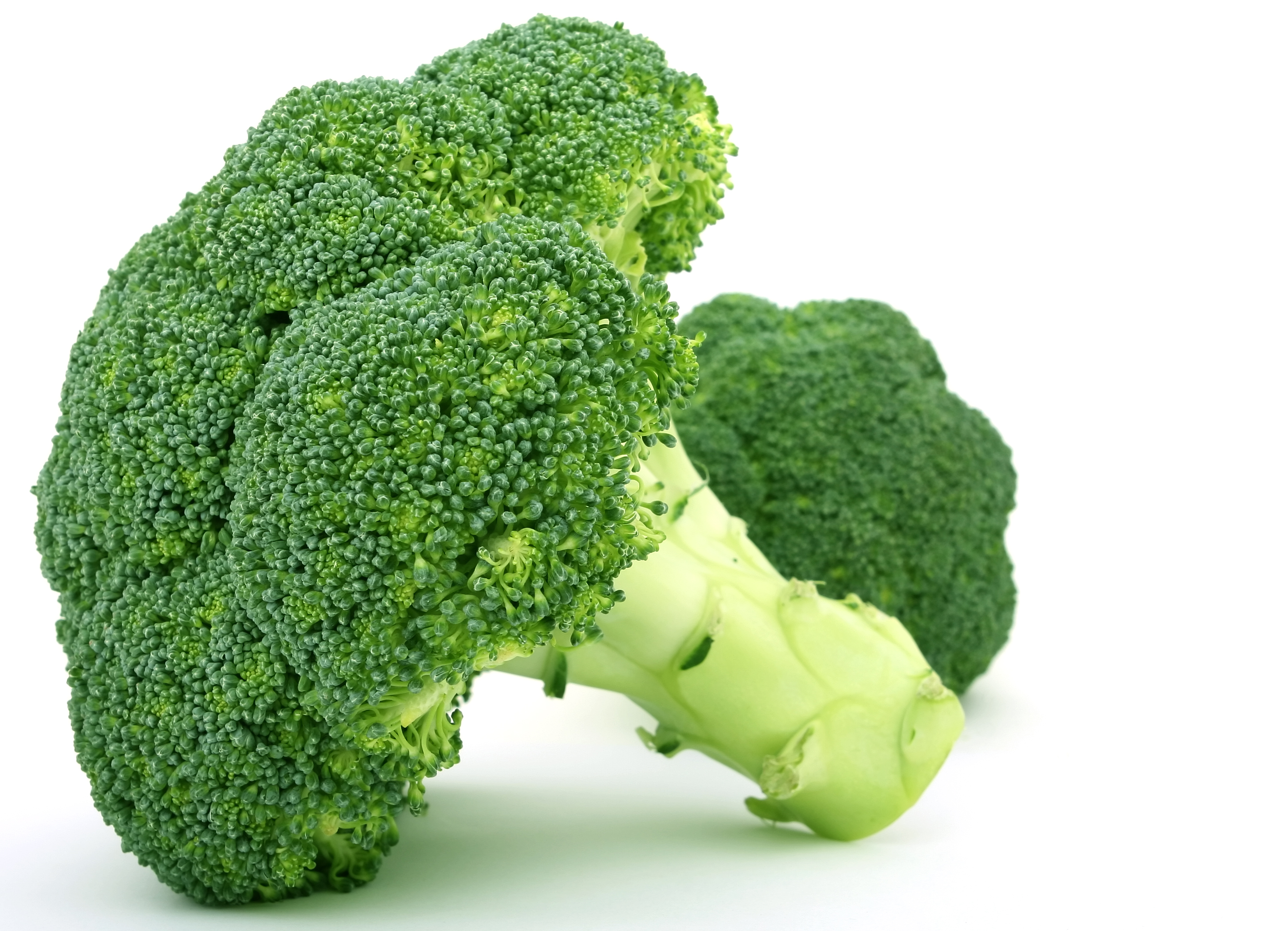 Superfoods broccoli health for the whole self